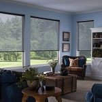 interior roller shades for the living room